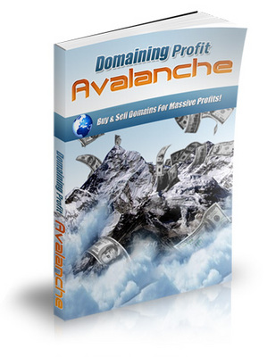 Product picture Domaining Profits Avalanche